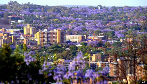 Pretoria, Alla Scoperta Delle Nuove Aperture Nell'area Metropolitana Più In Crescita Del Sudafrica photo