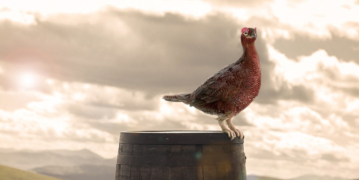 'well Deserved Grouse' Film Series Launches On Facebook photo