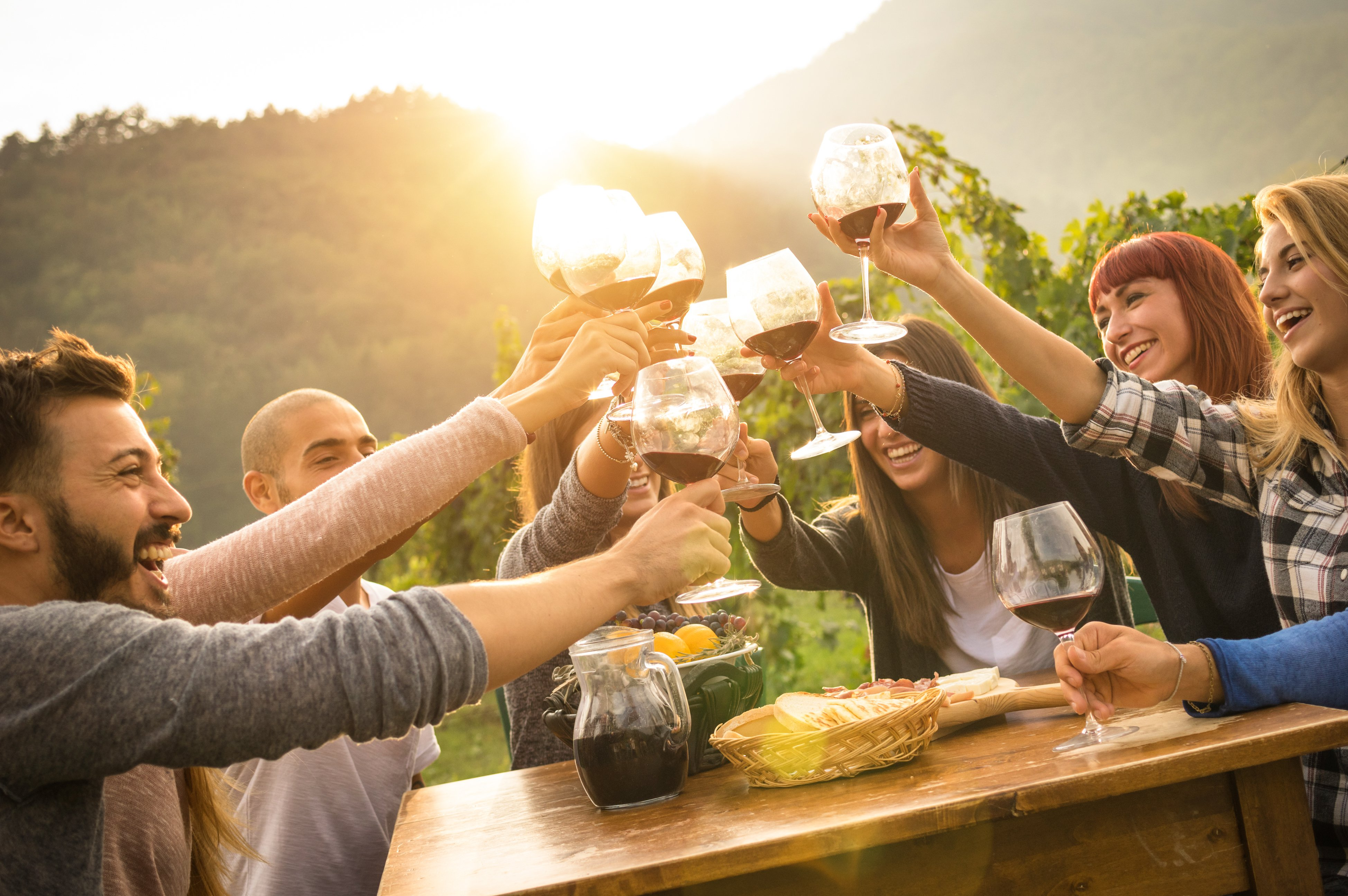 A Tour Of The Vegan Wineries Of Napa And Sonoma Counties! photo