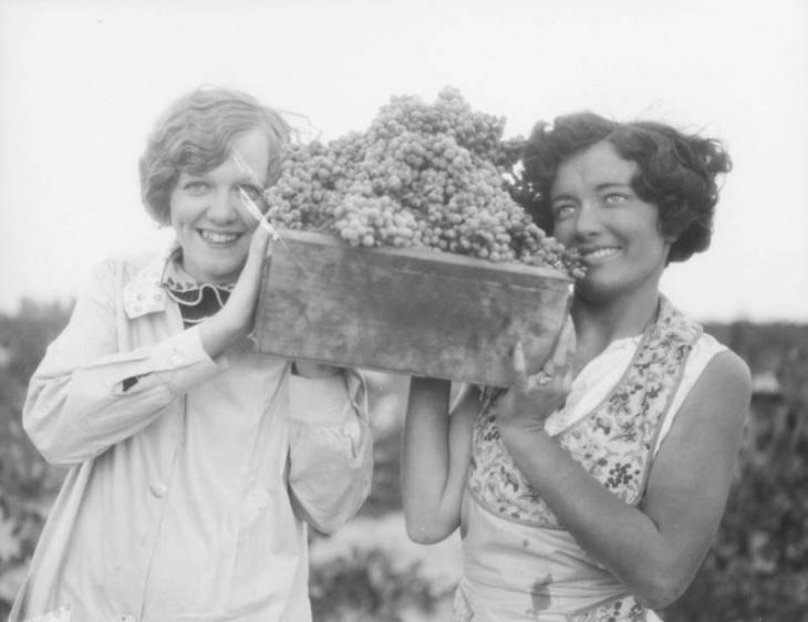 A New Dtla Winery Is Reviving La's Forgotten Winemaking History photo