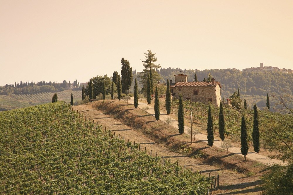 Four Wine Holidays You Need To Sign-up For photo