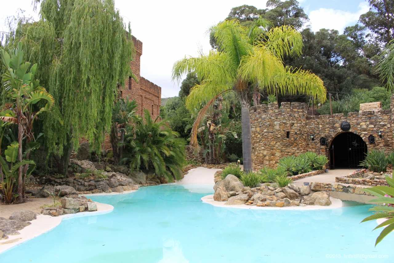 Fort Simon Wine Estate: Stellenbosch's Gold Standard photo