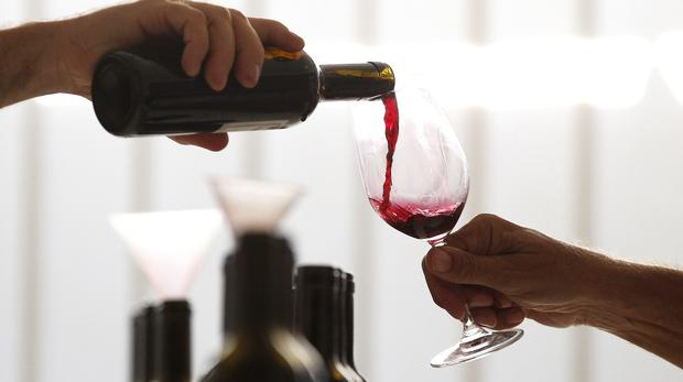 Germany Sees Biggest Wine Harvest Since 1999 photo
