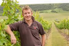 What Should Be Done To Ensure Sustainable Growth In English Wine? photo