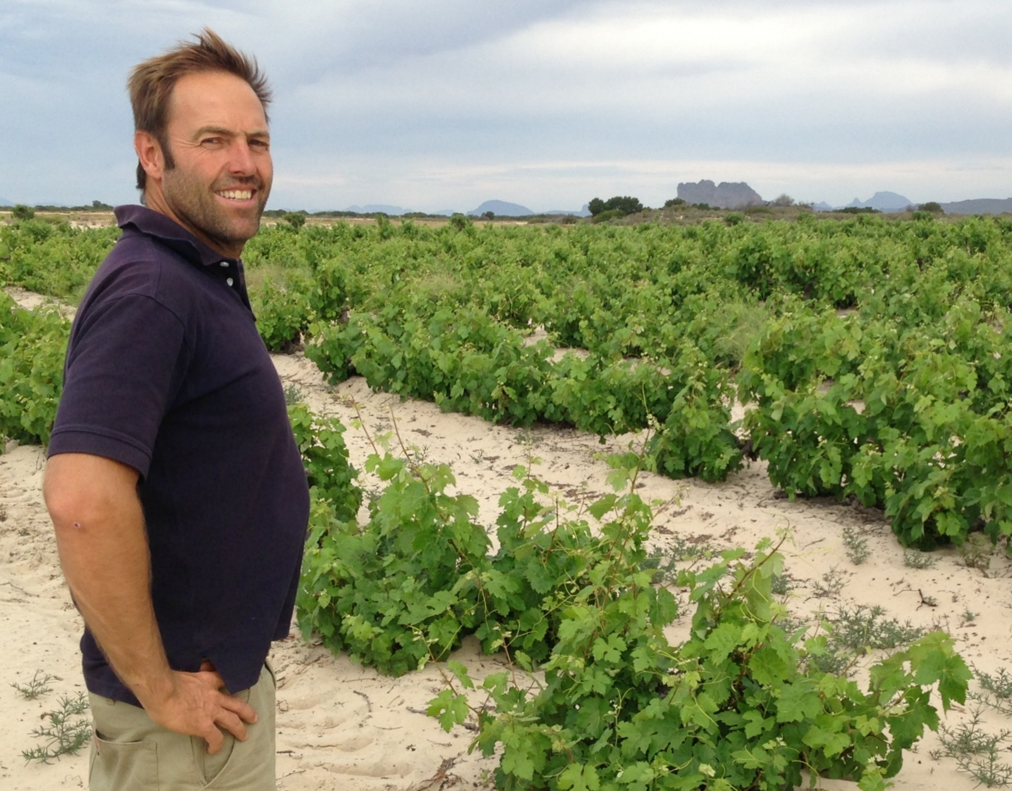 Tim James: The Top Five South African Wineries photo