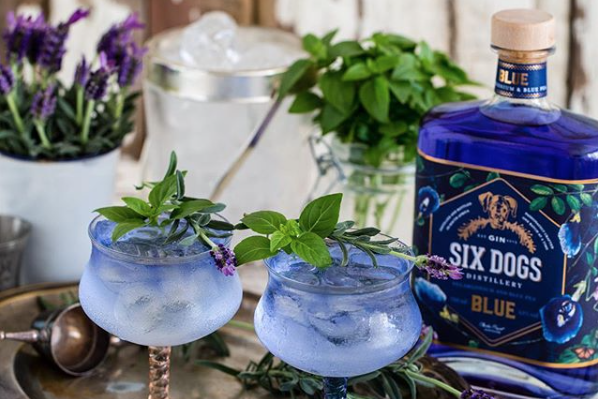 10 Local Gins To Collect photo