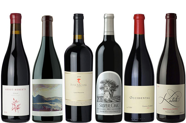 Top Sonoma Wines: Great Reds For The Cellar photo