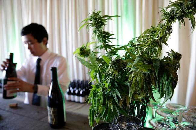 Andrew Jefford: 'cannabis Is Coming And Wine Producers Know It' photo