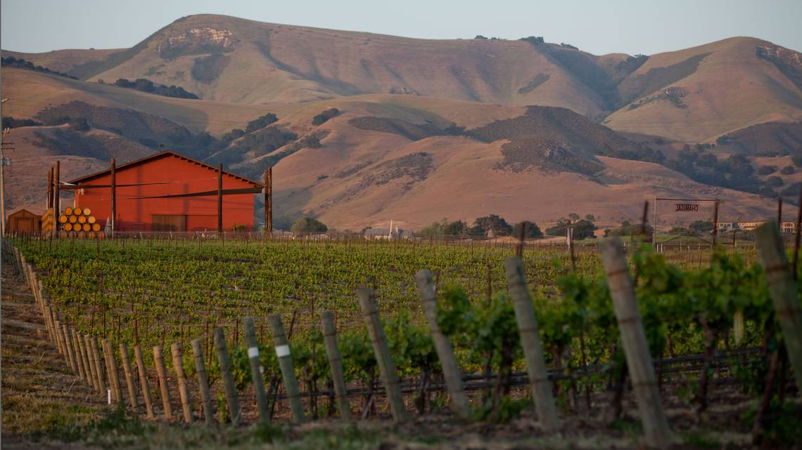 Move Over, Paso. Slo County Has A New Top Wine Destination photo