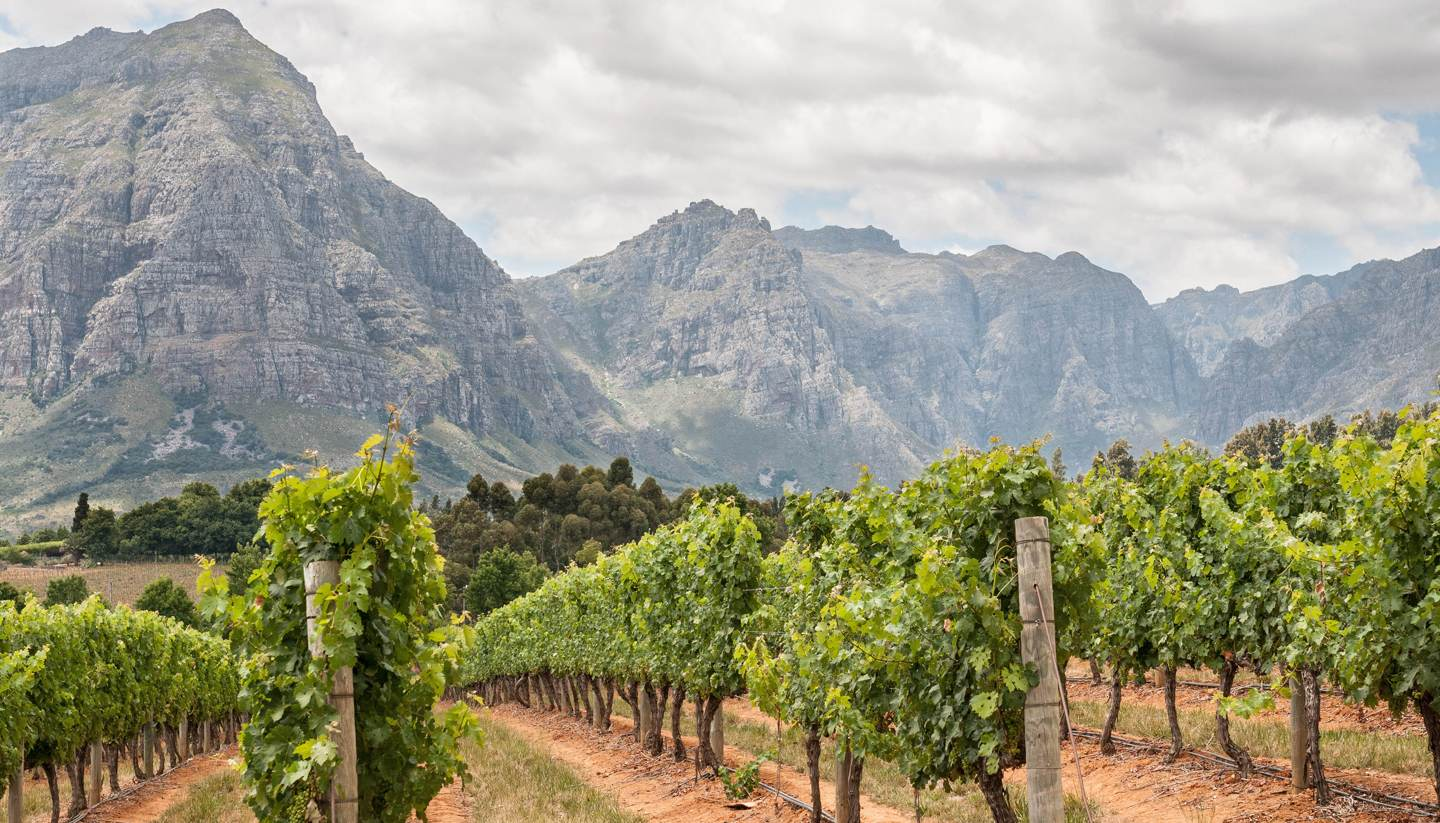 What's New In Stellenbosch, South Africa's Food & Wine Capital photo