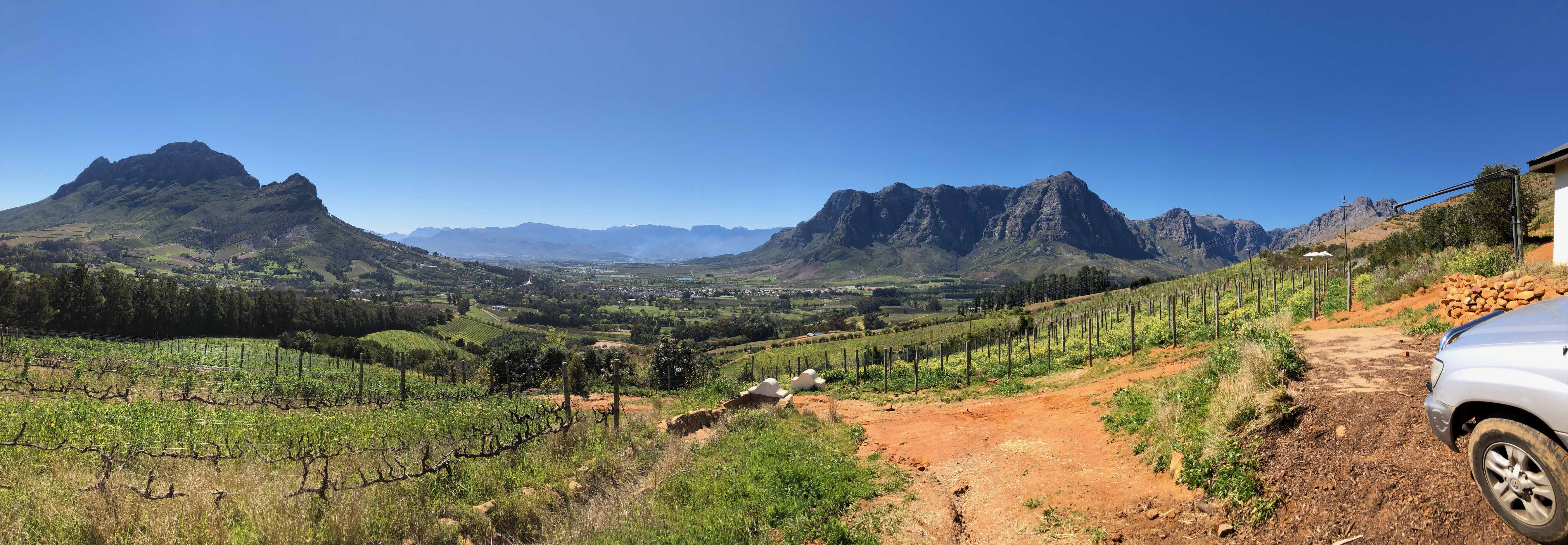 How South Africa Has The Confidence To Make World Class Wines photo