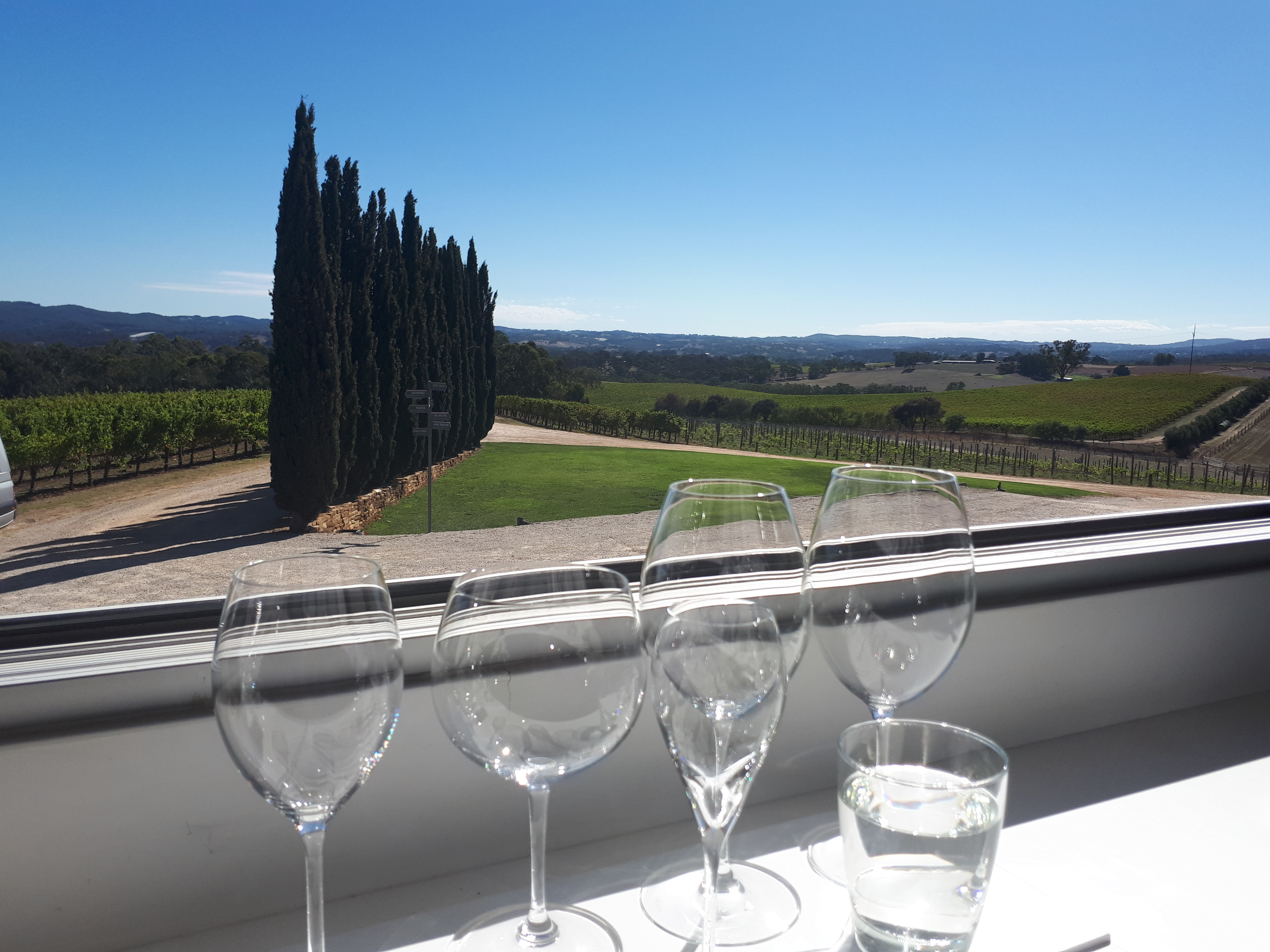 What My First Wine Tour In South Australia Taught Me photo