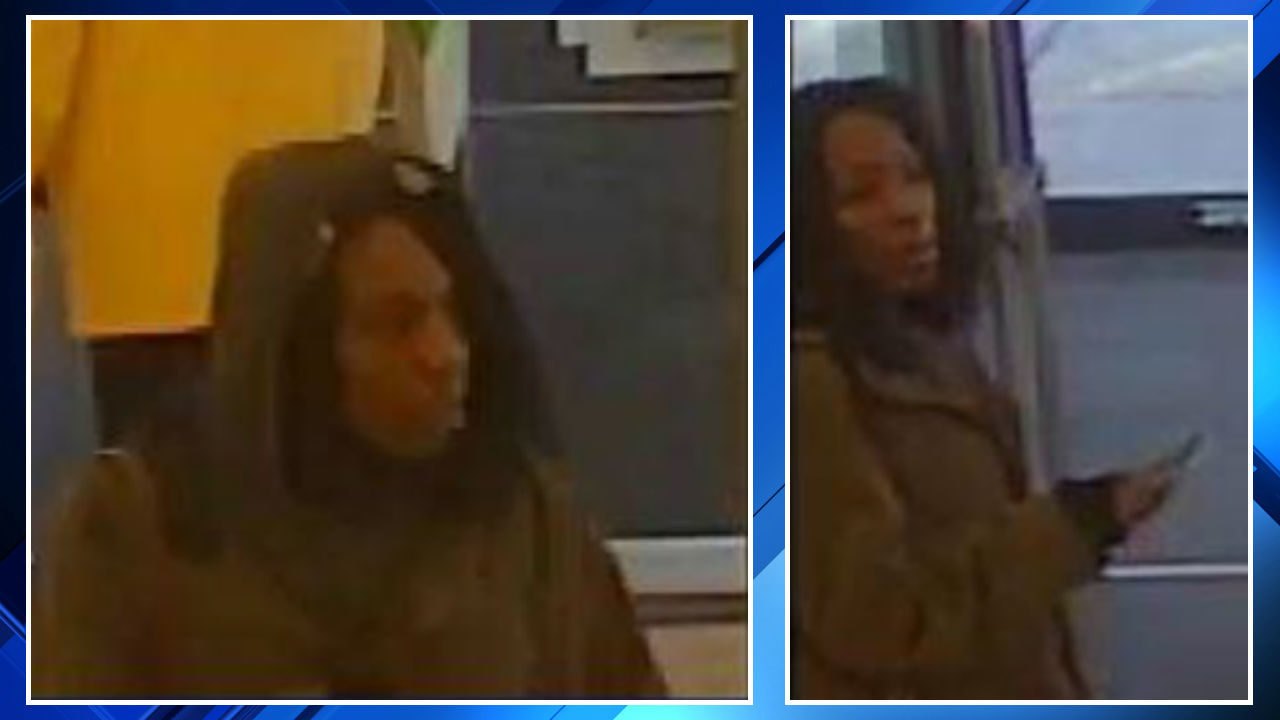 Woman Caught Trying To Steal Red-berry Ciroc Vodka From Bloomfield Township Store, Police Say photo