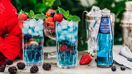 Fitch & Leedes Launches New Blue Tonic photo