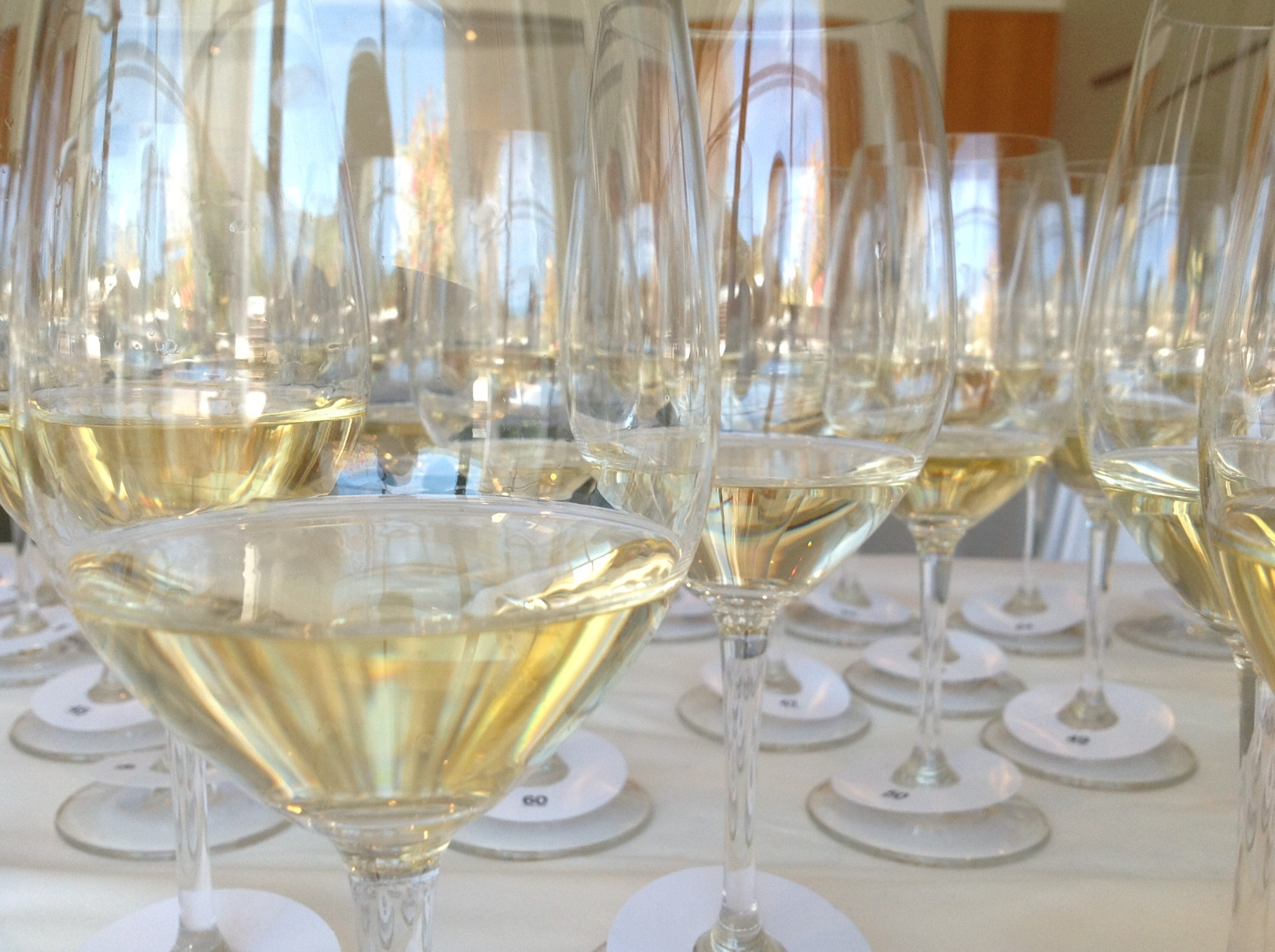 Wine Judging Academy 2019: Applications Open photo