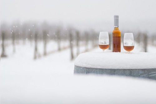 Global Icewine Market: Competitive Scenario With Cagr Review Forecast 2018-2023 photo