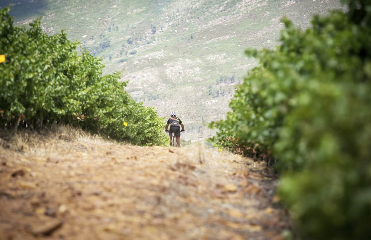 Du Toitskloof Wines Launches New Mtb Trail photo
