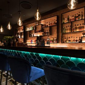 Idris Elba Opens London Cocktail Bar The Parrot photo