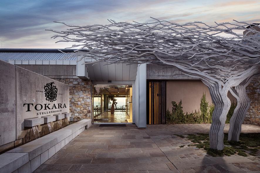 New TOKARA winemaker has his sights on Sauvignon Blanc photo