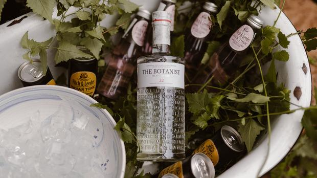 5 Gins To Try This Summer photo
