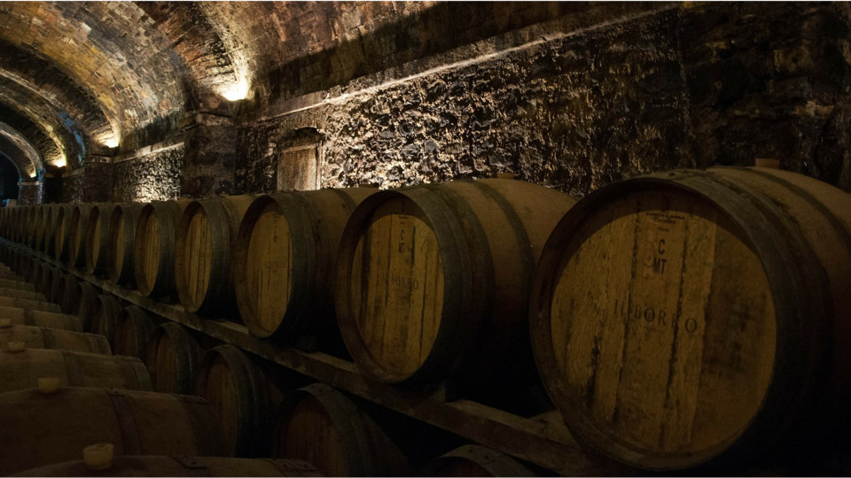 Clearwater-based Pair O' Dice Brewing Releases Barrel-aged, Rare Cellar Beers photo