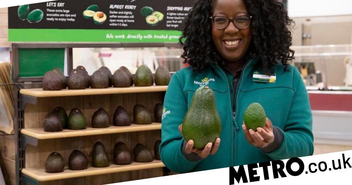UK Supermarket Launches Giant 1kg Avocados The Size Of Emu Eggs photo