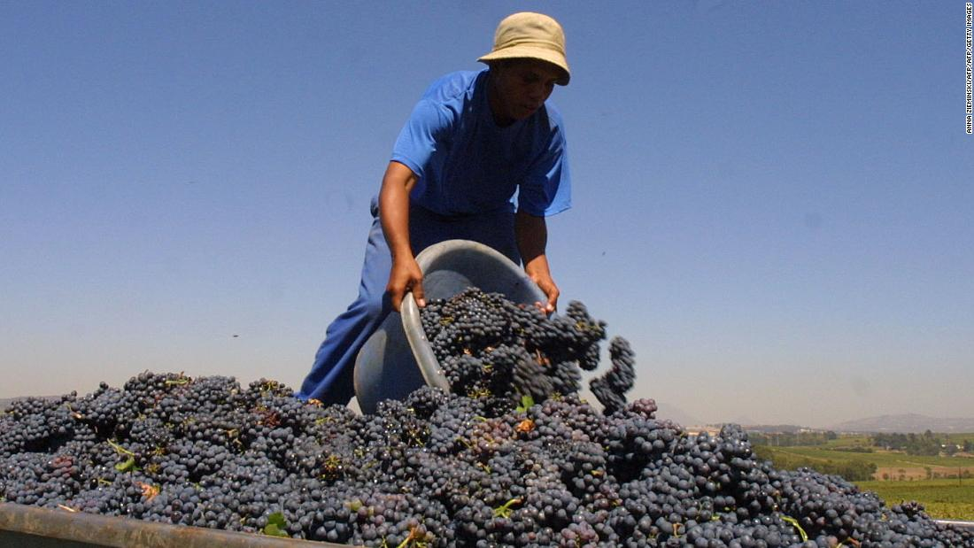 China Is Drinking More Wine. And South Africa Is Selling It. photo