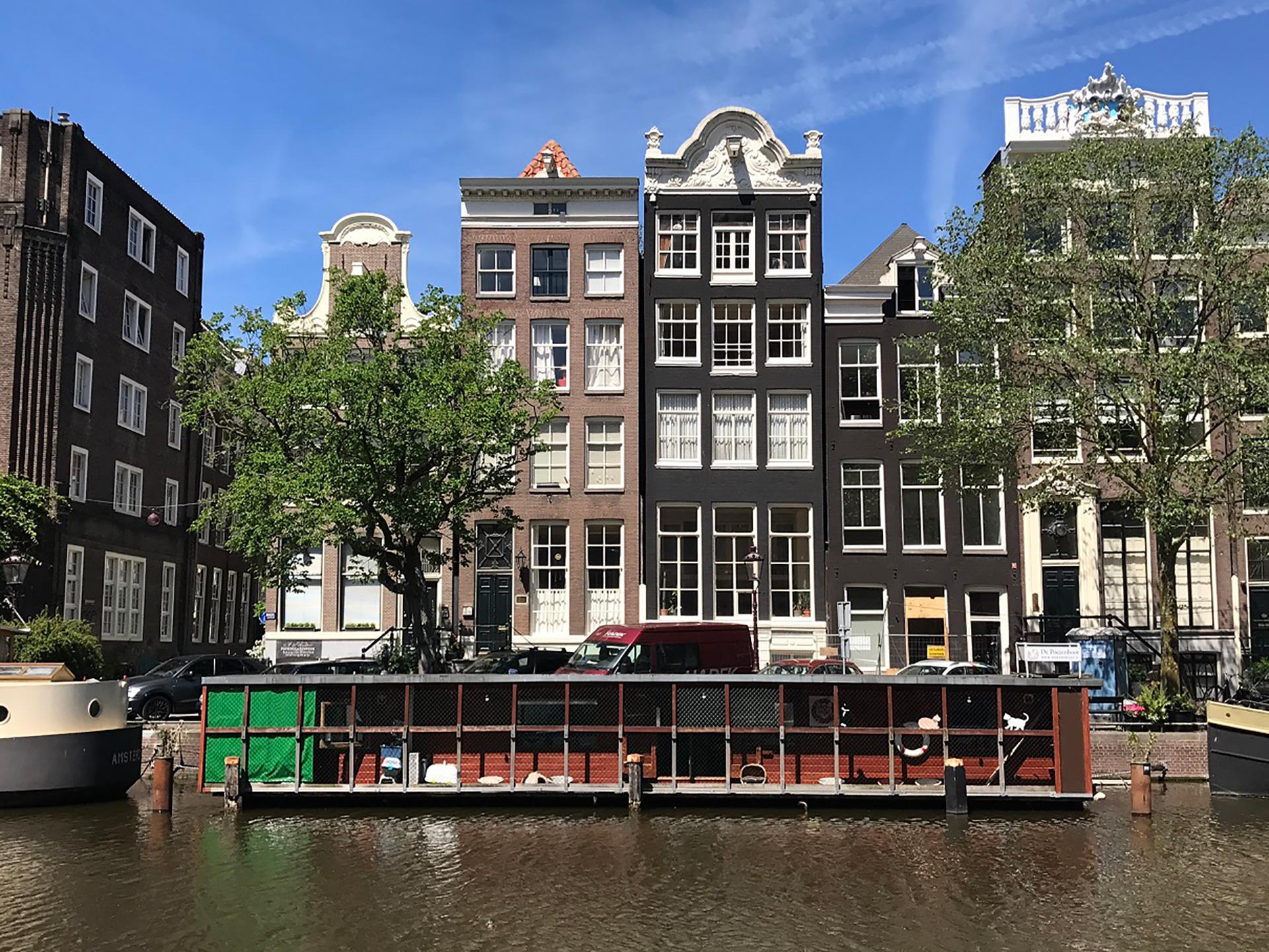 De Poezenboot! We Brought Coffee To Amsterdam's Delightful Floating Cat Charity photo