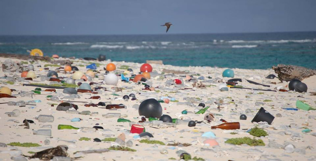 This Website Is Leading The Fight Against Ocean Plastics photo