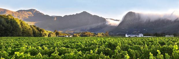 All The Award Winning Reasons To Eat And Drink In Franschhoek This Festive Season photo