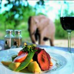 What you can expect to eat on an African Safari photo