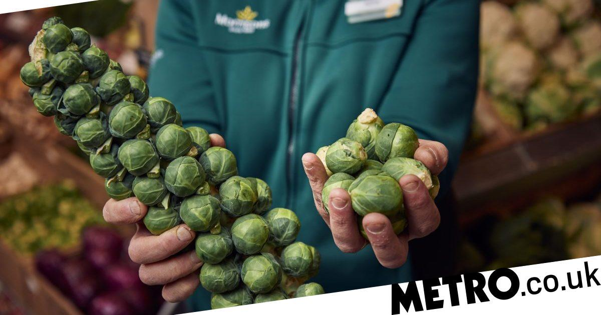 Morrisons Will Sell Wonky Brussels Sprouts For 75p Next Week photo