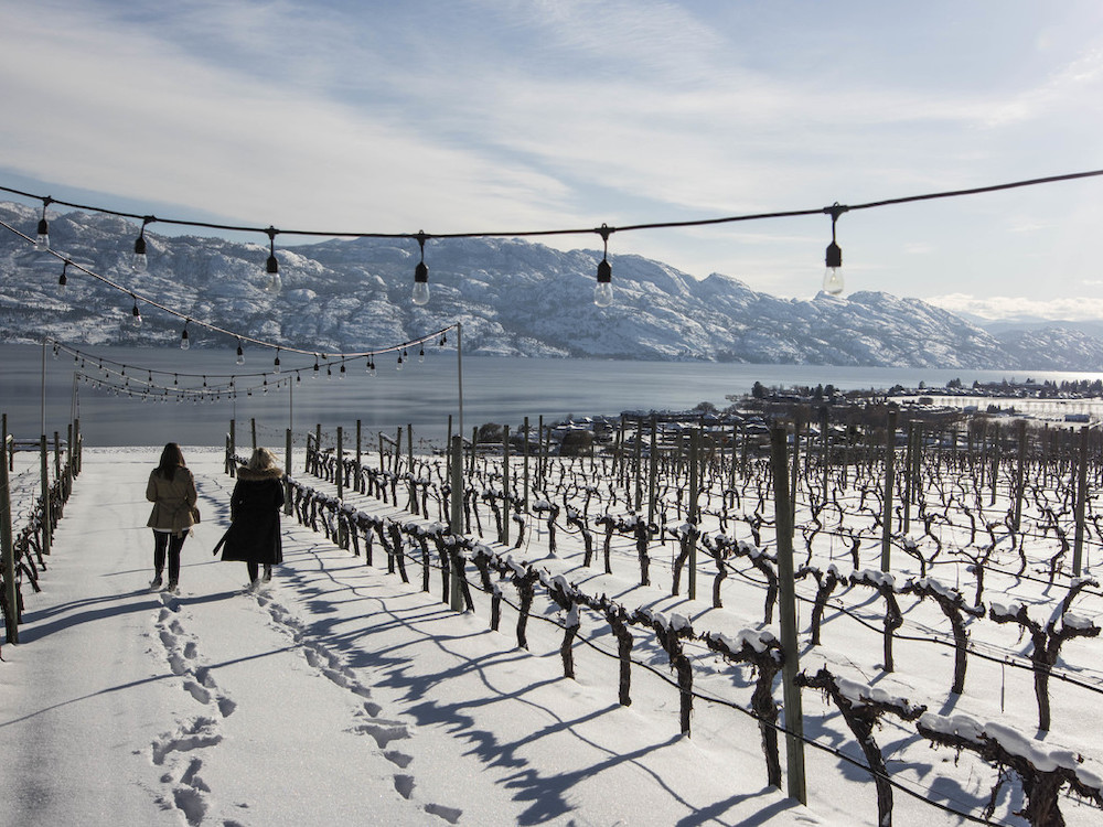 Bc Travel: Okanagan Valley Has Something For Everyone In The Winter photo