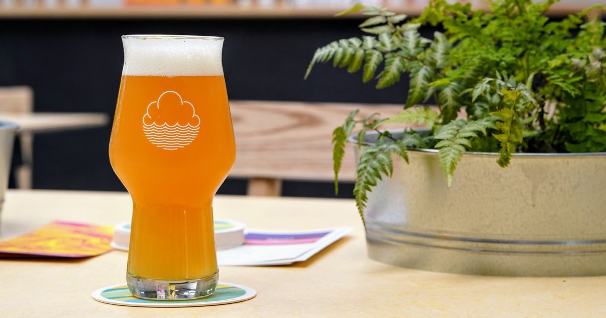 Manchester Craft Beer Bars, Pubs And Brewtaps To Visit In Tryanuary photo