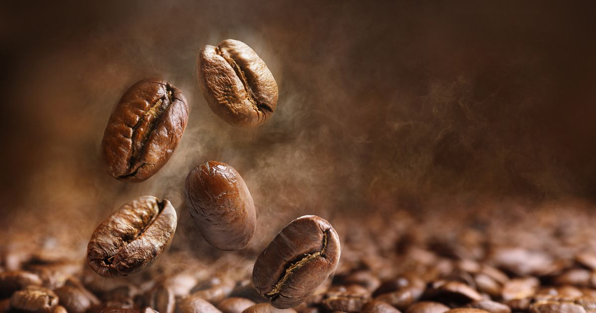 60% Of The Planet's Wild Coffee Species Face Extinction. What That Means For Your Morning Caffeine Kick. photo