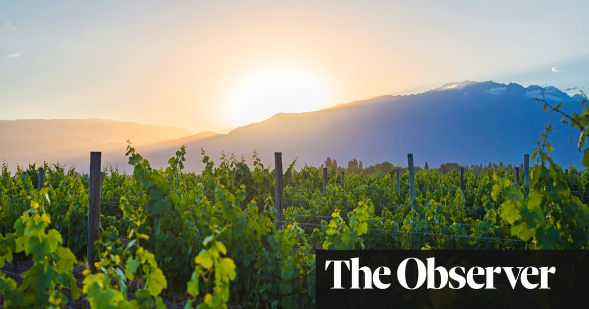 How Malbec Scaled The Heights photo