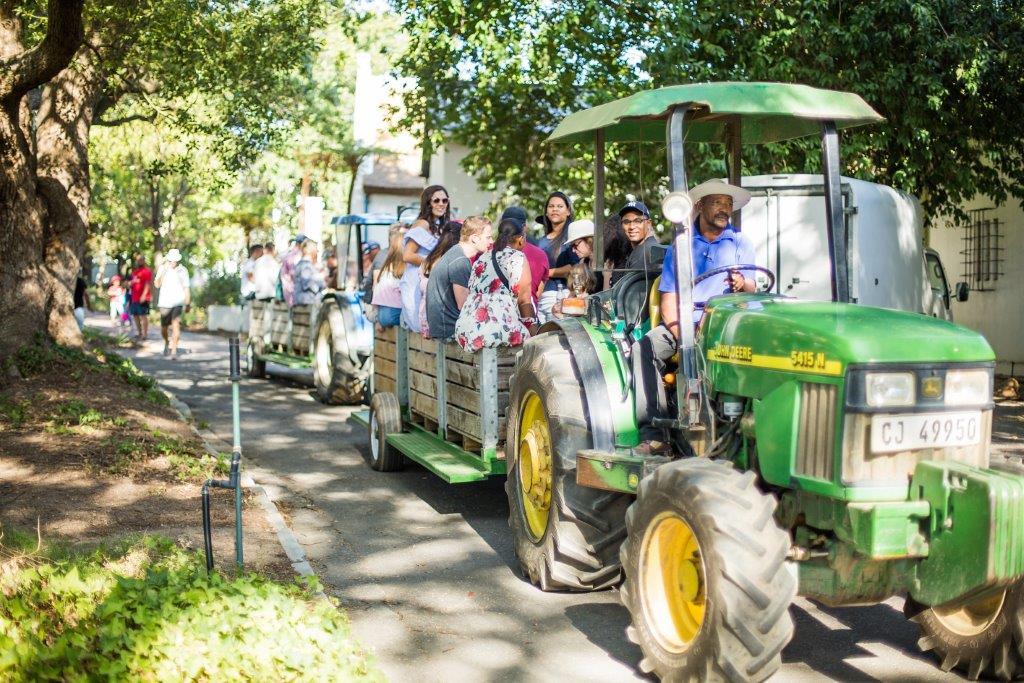 Celebrate The 2019 Wine Grape Harvest With Nederburg photo