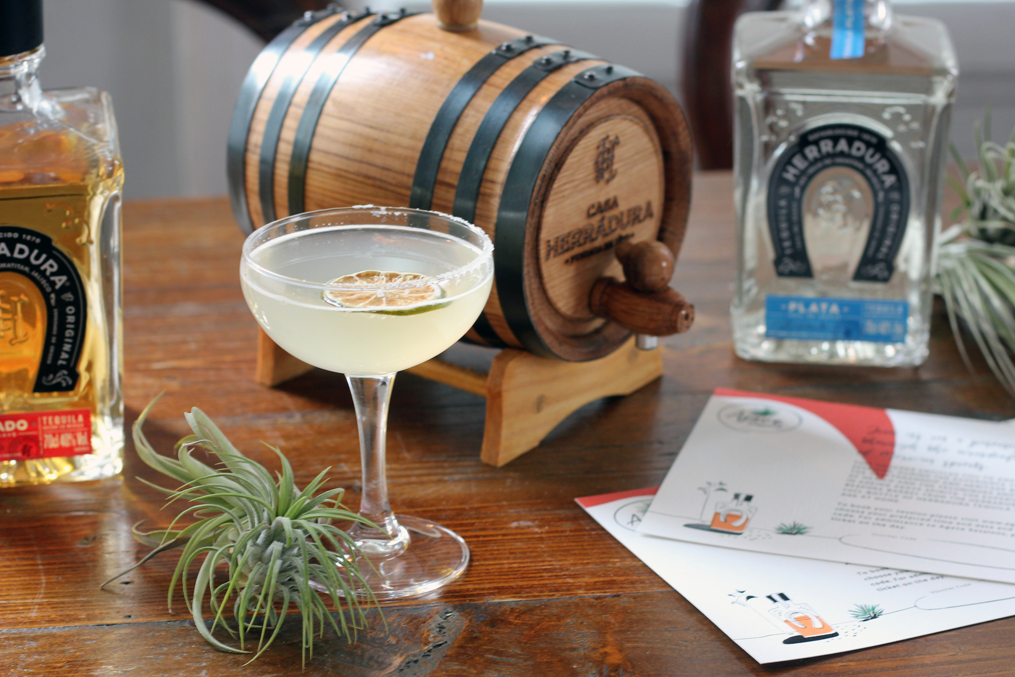 Ginstitute's Tequilaherradura Experience Agave Sessions photo