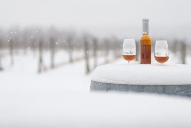 Global Ice Wine Market 2019 Competition Landscape 2025 photo