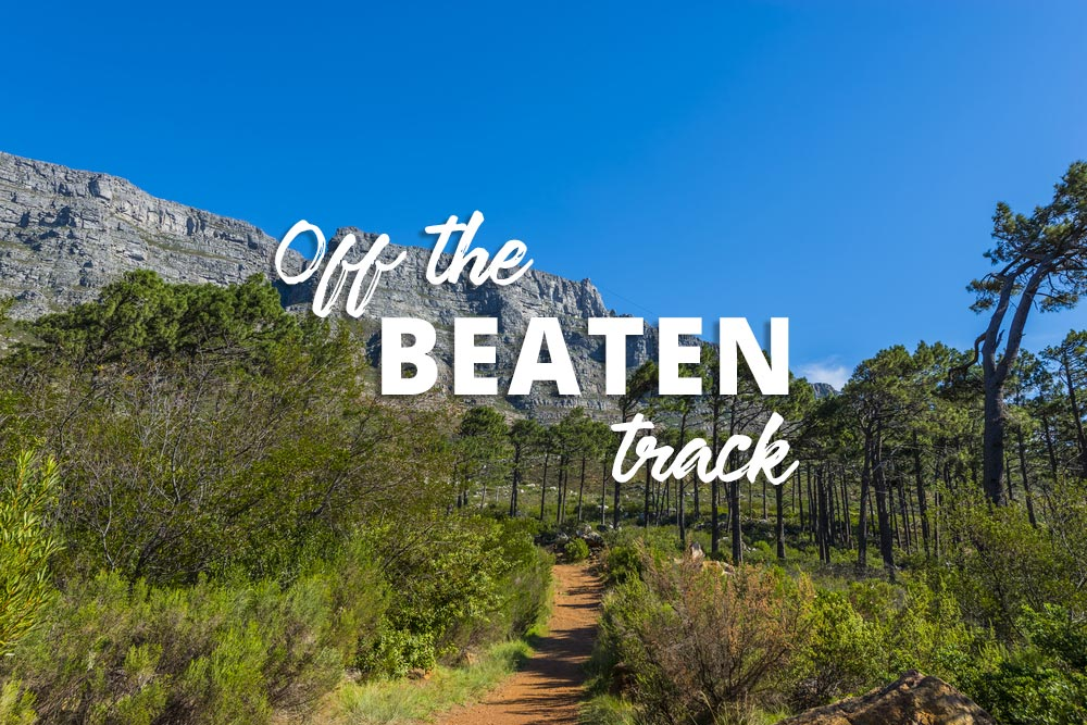10 Off The Beaten Track Adventures For Locals And Visitors To Cape Town photo