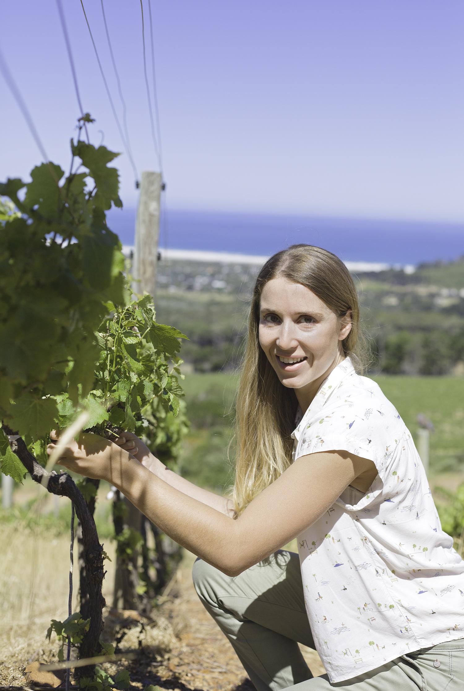 Malu Lambert: Interview With Riandri Visser Of Cape Point Vineyards photo