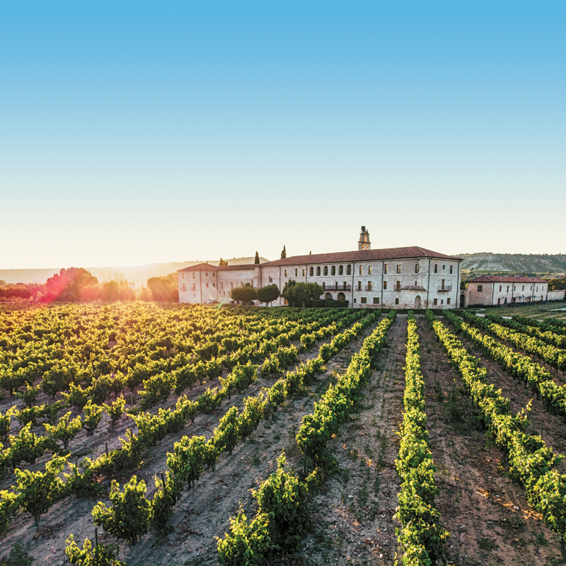 Spain's Ribera Del Duero: Stellar Wines And Fewer Visitors photo