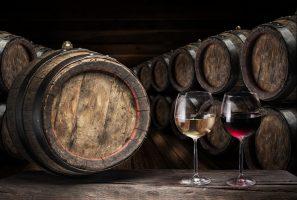 South African Wine Vineyards Restoring Nelson Mandela's Legacy photo