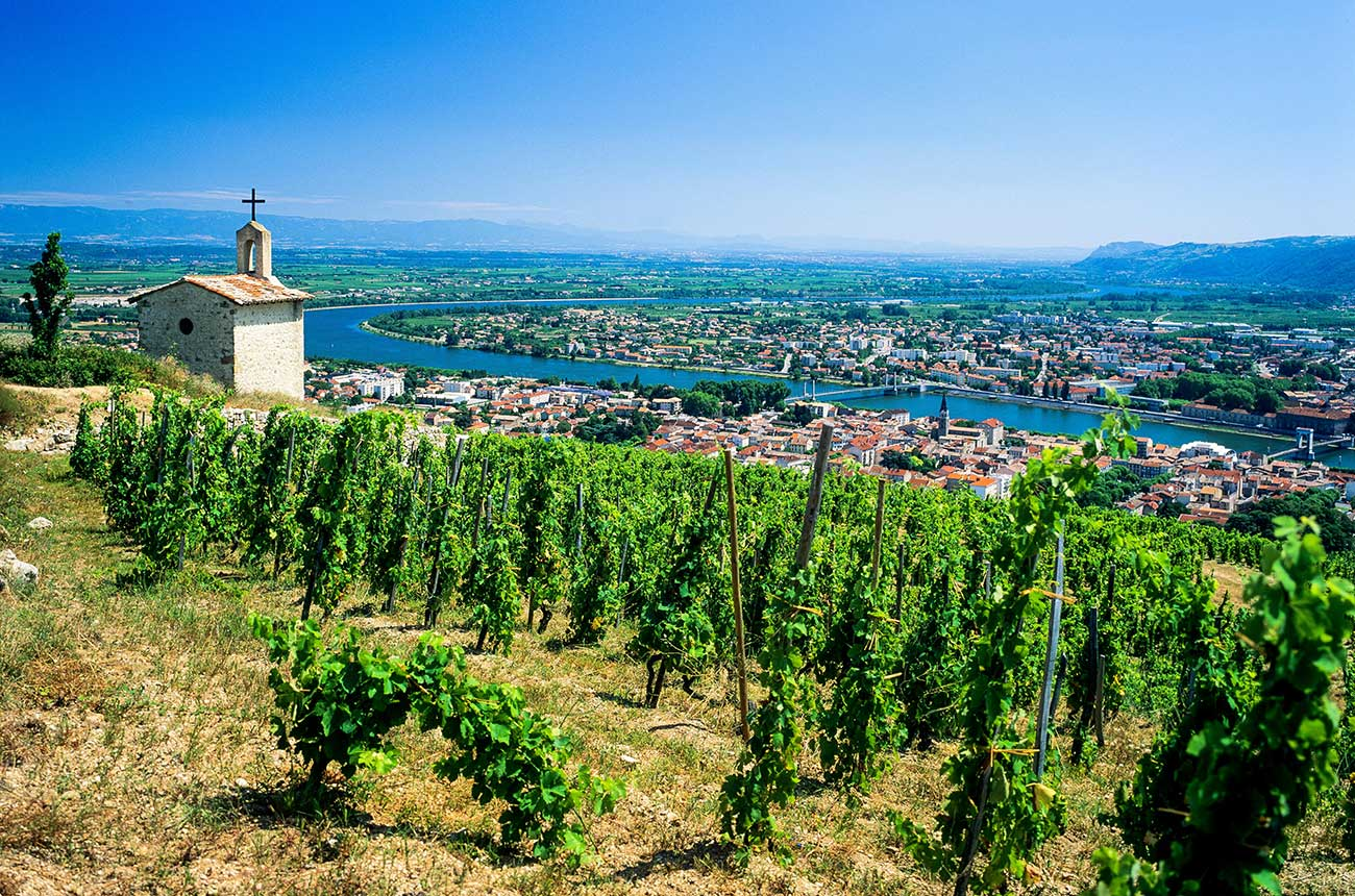 Best Value Rhône 2017 Wines photo