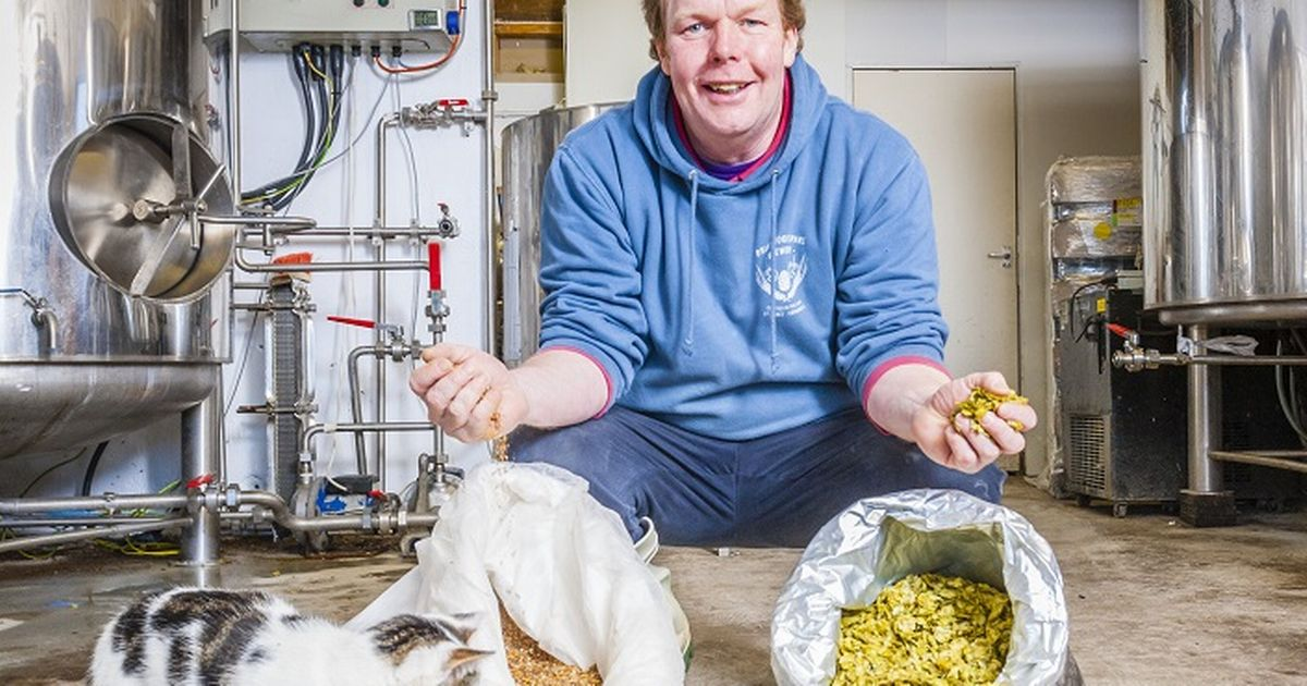 The First Brewery In Cornwall To Make All Of Its Beers Gluten Free photo