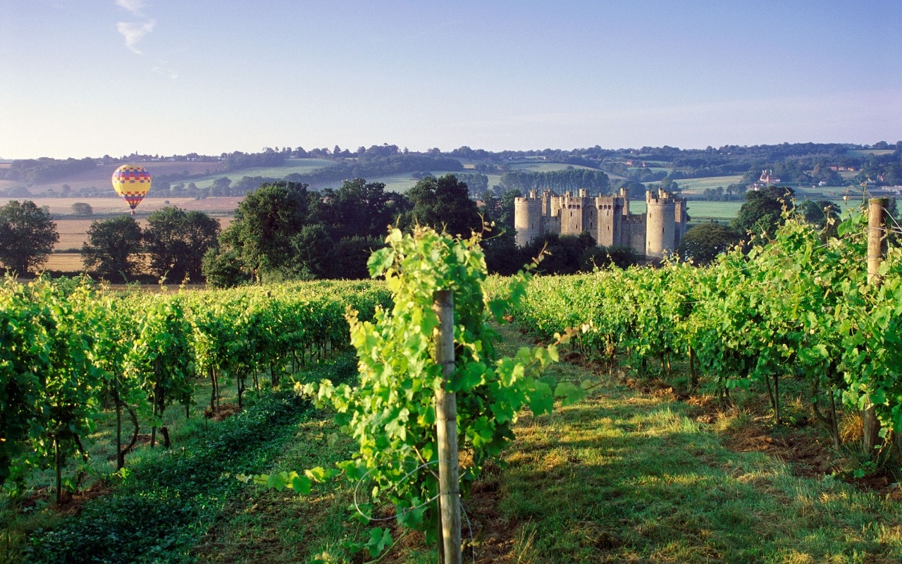 How To Taste Your Way Around The Vineyards Of Sussex photo
