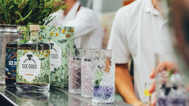 The Original Gin And Tonic Festival Returns To Cape Town photo