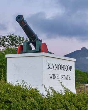 User Survey 2019: Sa's Top Wineries photo