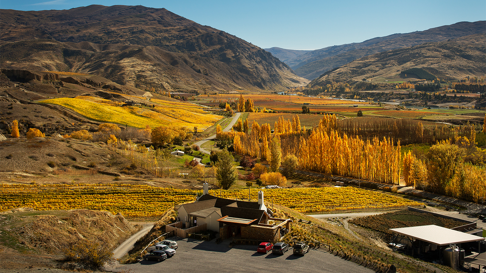 Foley Family Wines Buys New Zealand's Mt. Difficulty Winery For $35 Million photo