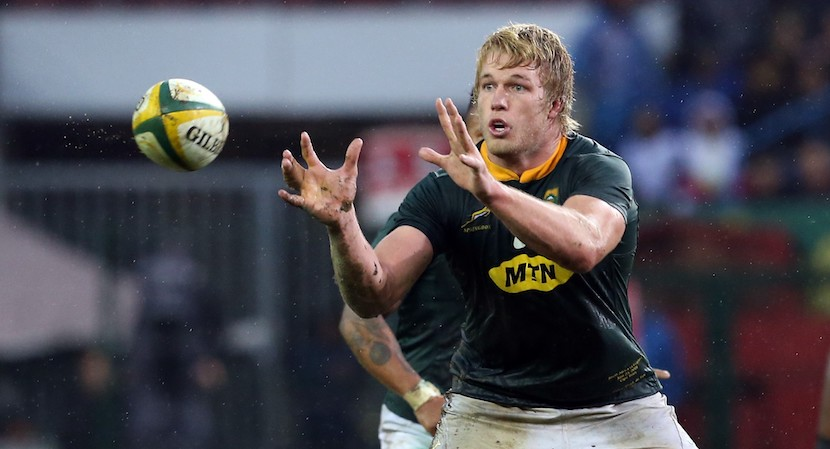 Pieter-steph Du Toit Is Sa Player Of The Year For The Second Time photo